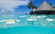 Viajes Pura Vida tiene los paquetes turísticos a los mejores precio y financiaciones del mercado. Para viajar a Cancún llamar al Tel. (011) 5235-667