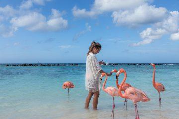 Aruba Verano 2018. Paquetes all inclusive desde Argentina. Financiaciones. Consultas a info@puravidaviajes.com.ar Tel. (11) 5235-6677