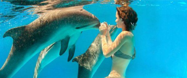 Punta Cana Verano 2018. Paquetes all inclusive desde Argentina. Consultas a info@puravidaviajes.com.ar Tel. (11) 52356677