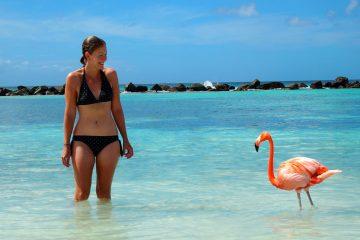 Aruba Enero y Febrero. Paquetes all inclusive desde Argentina. Financiaciones. Consultas a info@puravidaviajes.com.ar Tel. (11) 5235-6677