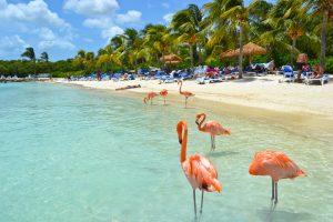 Aruba. Paquetes all inclusive desde Argentina. Financiaciones. Consultas a info@puravidaviajes.com.ar Tel. (11) 5235-6677.