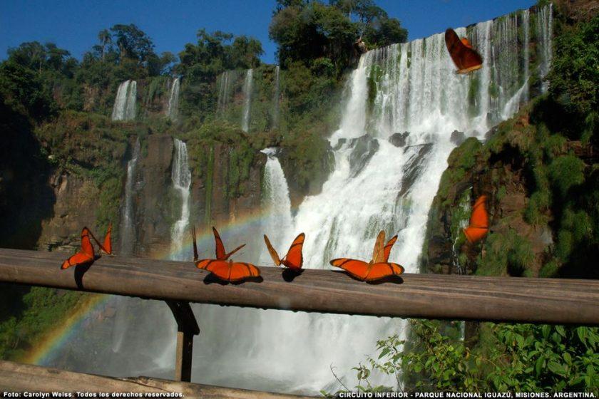 Iguazú Mayo Vacaciones. Paquetes all inclusive desde Argentina. Financiaciones. Consultas a info@puravidaviajes.com.ar Tel. (11) 52356677