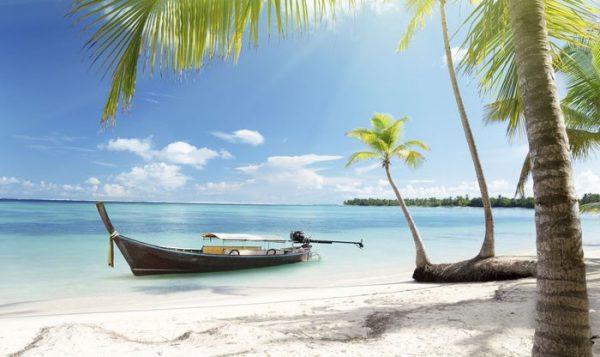 Punta Cana 21 y 22 de. Paquetes all inclusive desde Argentina. Financiaciones. Consultas a info@puravidaviajes.com.ar Tel. (11) 5235-6677.