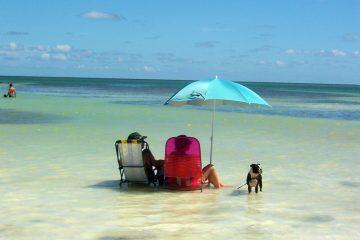 La Habana, Cayo. Paquetes all inclusive desde Argentina. Financiaciones. Consultas a info@puravidaviajes.com.ar Tel. (11) 5235-6677.