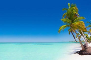 Punta Cana Avance 2019 24 de Febrero. Paquetes desde Argentina. Financiaciones. Consultas a info@puravidaviajes.com WhatsApp: 1130803344