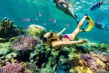 Riviera Maya Avance 2019. Paquetes all inclusive desde Argentina. Financiaciones. Consultas a info@puravidaviajes.com.ar Tel. (11) 5235-6677.