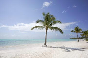 Punta Cana 22. Paquetes all inclusive desde Argentina. Financiaciones. Consultas a info@puravidaviajes.com.ar WP +54 9 11 3080-3344