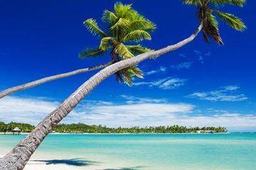 La Habana, Cayo Largo, Varadero. Paquetes desde Argentina. Financiaciones. Consultas a info@puravidaviajes.com WhatsApp: 1130803344