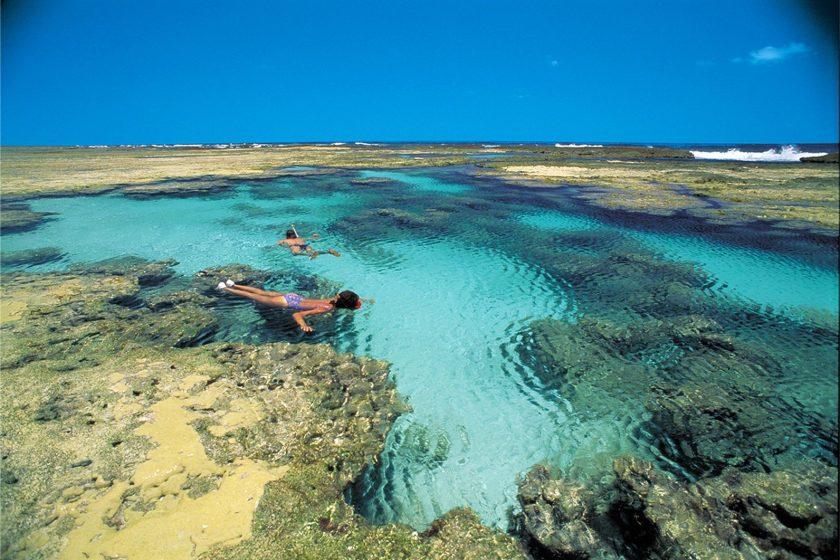 Praia Do Forte. Paquetes all inclusive desde Argentina. Financiaciones. Consultas a info@puravidaviajes.com.ar WP +54 9 11 3080-3344