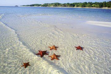Riviera Maya 25. Paquetes desde Argentina. Financiaciones. Consultas a info@puravidaviajes.com WhatsApp: 1130803344