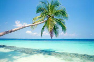 Riviera Maya 12, Paquetes desde Argentina. Financiaciones. Consultas a info@puravidaviajes.com WhatsApp: 1130803344