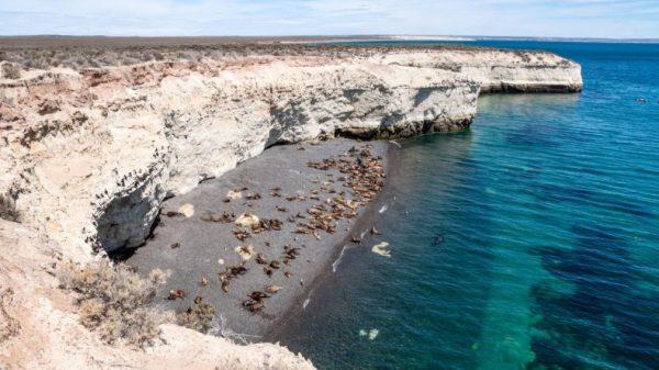 Península de. Paquetes All inclusive desde Argentina. Consultas a info@puravidaviajes.com.ar Tel. (11) 52356677