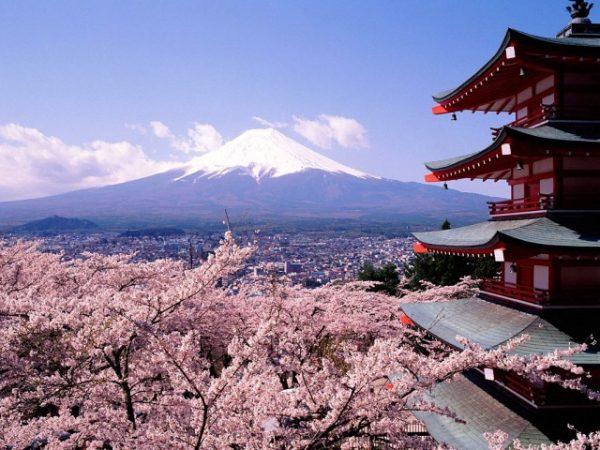 Japón con Dubai 2. Paquetes desde Argentina. Financiaciones. Consultas a info@puravidaviajes.com WhatsApp: 1130803344
